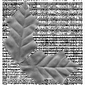 Leaf Template #28