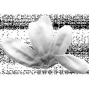 Flower 083 Template