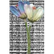 Jolly Flower- Blue & White