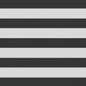 Here & Now- Stripes Paper- Wide