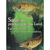 Fisher Fish Pocket Card