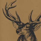 Hunter Paper 855- Deer Head