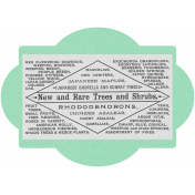 Oregonian Vintage Tag- Mint Green