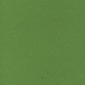 World Traveler Solid Paper Green