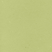 World Traveler Solid Paper Green2