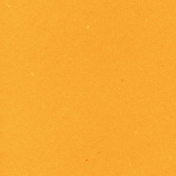 World Traveler Solid Paper Orange