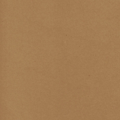 Tpl Kraft Paper Textured058b