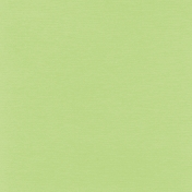 Tpl Solid Paper Green1