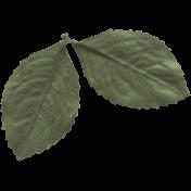 Birdhouse Element Leaf043