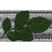 Birdhouse Element Leaf047