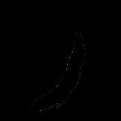 Bird 014 Graphic