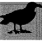 Bird 016 Graphic