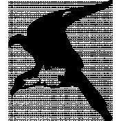 Bird 017 Graphic