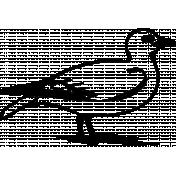Bird 020 Graphic