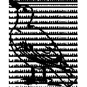 Bird 023 Graphic
