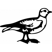 Bird 034 Graphic
