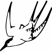 Bird 042 Graphic