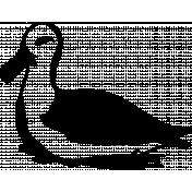 Bird 050 Graphic