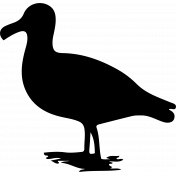 Bird 051 Graphic