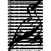 Bird 057 Graphic