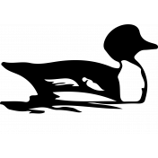 Bird 062 Graphic