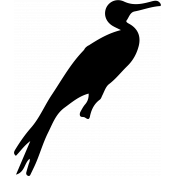 Bird 074 Graphic