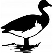 Bird 077 Graphic
