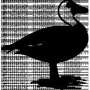 Bird 078 Graphic