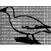 Bird 081 Graphic