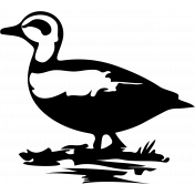 Bird 087 Graphic