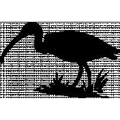 Bird 090 Graphic