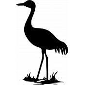 Bird 094 Graphic