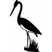 Bird 096 Graphic