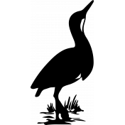 Bird 100 Graphic