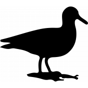 Bird 114 Graphic