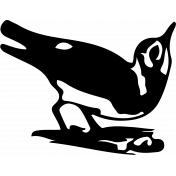Bird 117 Graphic