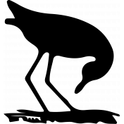 Bird 118 Graphic