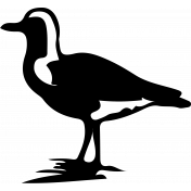 Bird 122 Graphic