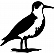 Bird 124 Graphic