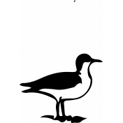 Bird 126 Graphic