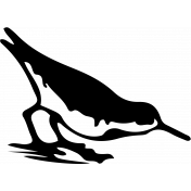 Bird 127 Graphic