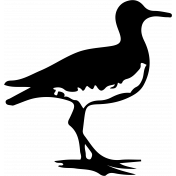 Bird 129 Graphic