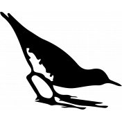 Bird 130 Graphic