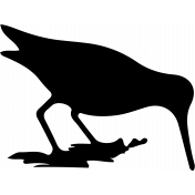 Bird 131 Graphic
