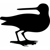 Bird 132 Graphic