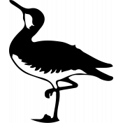 Bird 134 Graphic