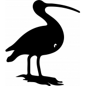 Bird 139 Graphic