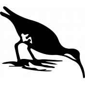 Bird 140 Graphic