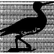 Bird 141 Graphic