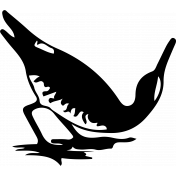 Bird 142 Graphic